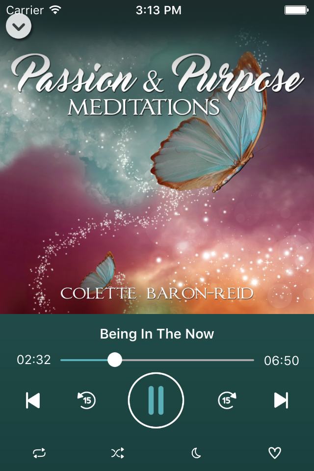 Passion Purpose Meditations